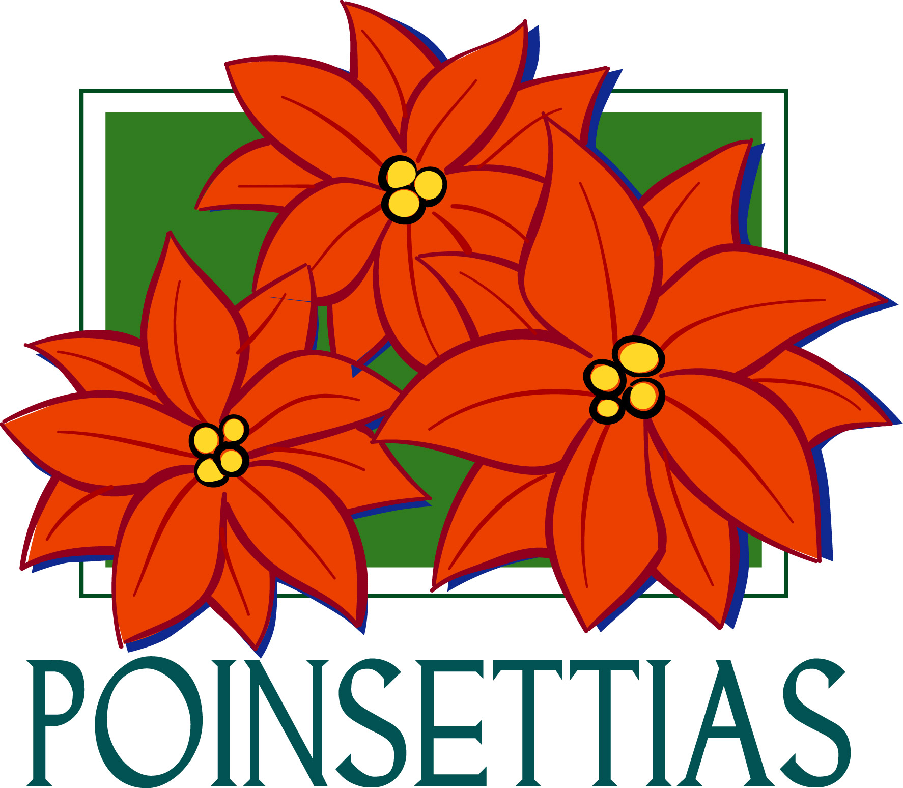 Poinsettias | Cheap Filing Cabinets