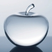 cystal apple award photo of apple