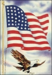 US_military_flag_and_eagle