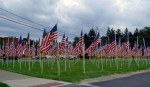 Ohio Flags of honor all American flags
