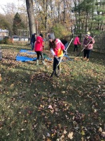 leaf_raking1.jpg
